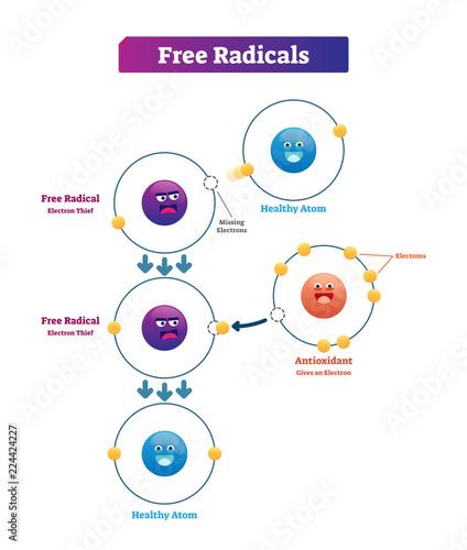 Photo Free radicals, antioxidant and healthy atom explanation vector illustration diag