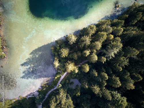 Staande foto Olijf Aerial view of trees near the lake and the forest from above