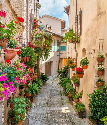 Fototapeta premium Sceniczny widok w Spello, kwiecistej i malowniczej wiosce w Umbria, prowincja Perugia, Włochy.