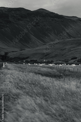 In de dag Donkergrijs Iceland black and white landscape