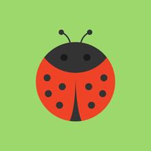 Cute Ladybird Round Vector Gra...