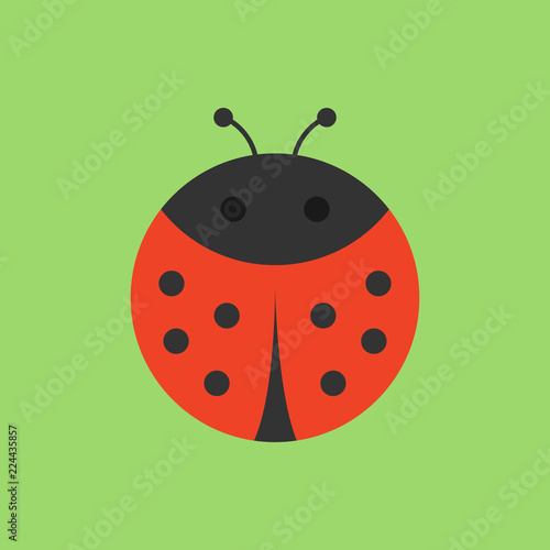 Cute ladybird round vector graphic icon Wallpaper Mural