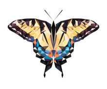 Vector Polygonal Butterfly Isolated On White. Low Poly Illustration. Triangle Color Insect Image.