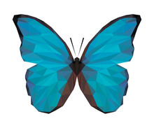 Vector Polygonal Butterfly Iso...