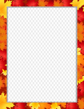 Vector Vertical Border With Fallen Autumn Maple Leaves Isolated With Copy Space