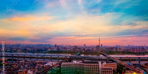 Scenic view of the city of tokyo, the capital city of Japan in twilight