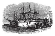 Casting Tea Overboard In Boston Harbor,vintage Illustration