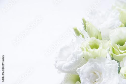 Fotografering トルコキキョウ 花束