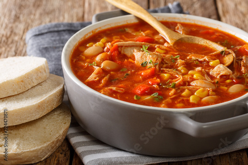 Brunswick stew is a popular dish in the south of America, made from meat with vegetables, spices and barbecue sauce close-up. horizontal