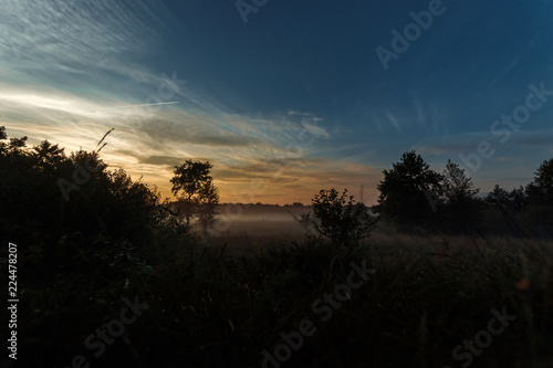 Foto op Aluminium Nachtblauw Beautiful foggy landscape, sunset. The fog glowing in the sunlight, above the meadow grass.
