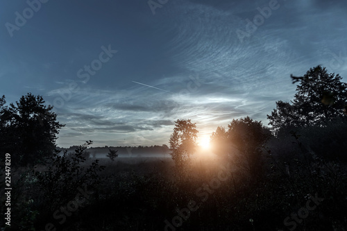 Foto op Canvas Zwart Beautiful foggy landscape, sunset. The fog glowing in the sunlight, above the meadow grass.