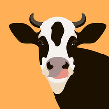 Cow  Face Vector Illustration Flat Style Front