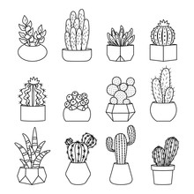 Cartoon Line Style Cactus And ...