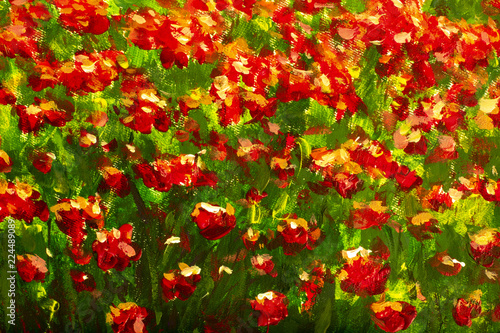 Red, yellow Poppies, roses, tulips flowers Canvas Print