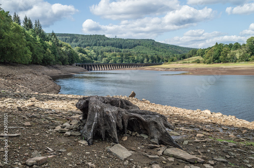 Fotografie, Obraz  Ladybower Reservoir in the Upper Derwent Valley.