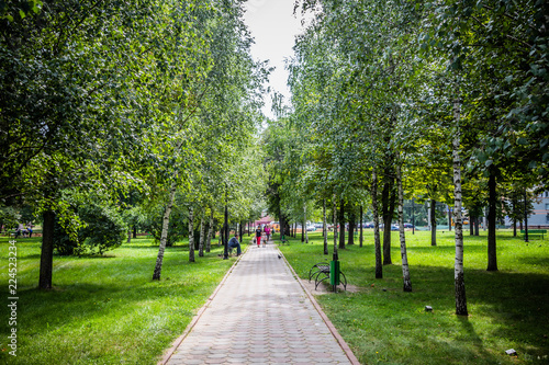 Fotografía  green park in the center of the city in bright sunny weather