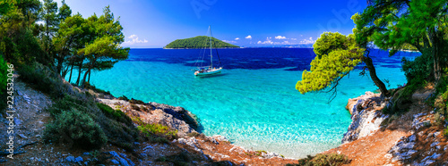 Staande foto Strand Wild beauty and best beaches of Skopelos island. Kastani beach. Sporades, Greece