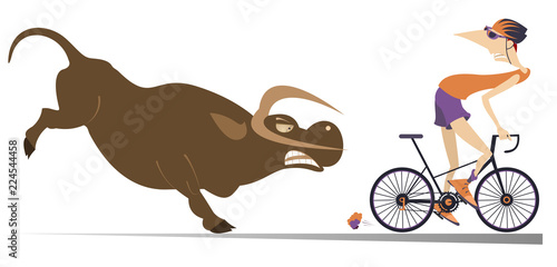 Deurstickers Stierenvechten Angry bull and cyclist cartoon illustration. Frightened cyclist escapes from the angry bull isolated on white illustration