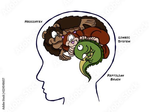 Slika na platnu Triune Brain