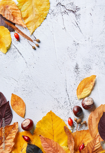 Fotografía  Autumn leaves on a stone background