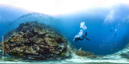Valokuva  360 sea turtle in Galapagos