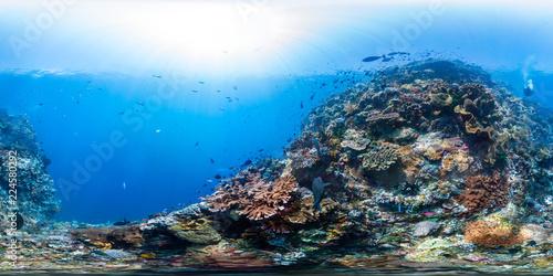 Staande foto Koraalriffen Diver on Raja Ampat reef