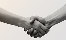 Business Agreement Handshake On White Background. Black And