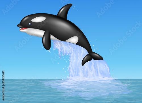 Foto op Plexiglas Dolfijnen Cartoon orca jumping on the blue ocean background