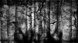 canvas print picture - Spooky forest with flying birds, dead trees, cobwebs and zombie hands over graves, Halloween party. Gothic design
