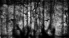 Spooky Forest With Flying Birds, Dead Trees, Cobwebs And Zombie Hands Over Graves, Halloween Party. Gothic Design