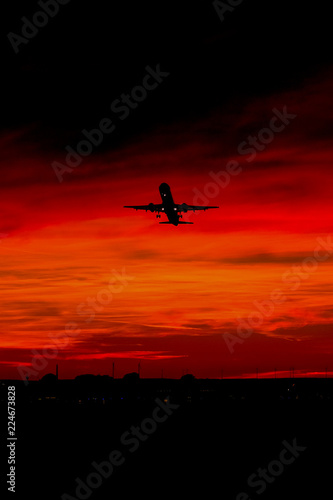 sunset fly 3 Canvas Print