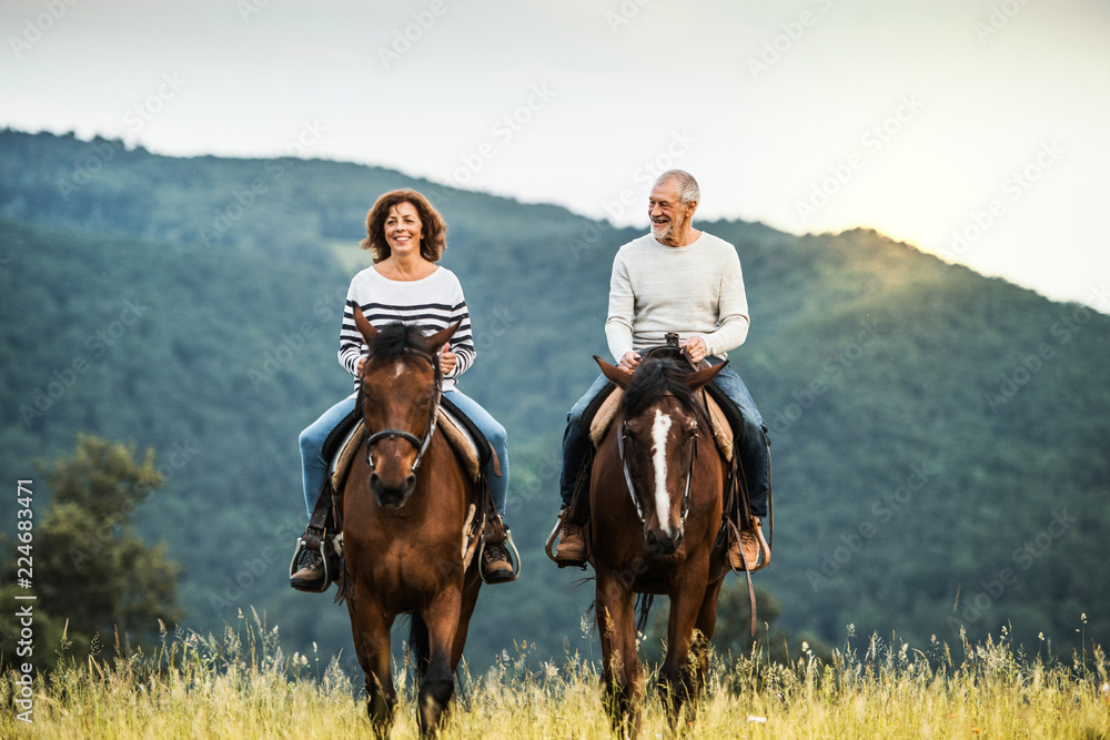 Fototapety, obrazy: A senior couple riding horses in nature.