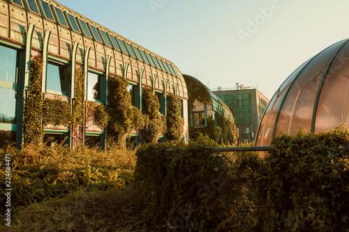 Fototapeta University of Warsaw Library with beautiful rooftop gardens, Warsaw, Poland obraz