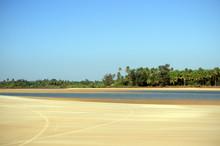 Sand Beach With Palm Trees