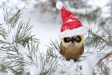 Cute Toy Owl In Hat Of Santa C...
