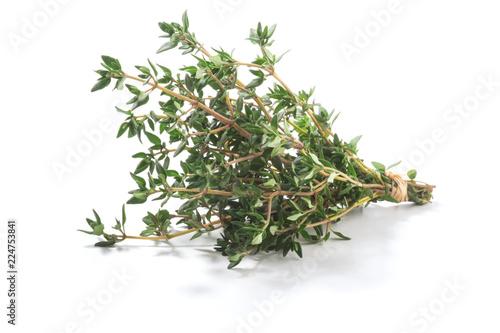 Thyme fresh herbs (Thymus vulgaris) shrub. Fine herb. Isolated on a white background.