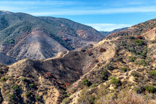 Burned Hillsides In California Mountains On Early Autumn Morning