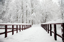 Cold Winter Wooden Bridge In The Forest