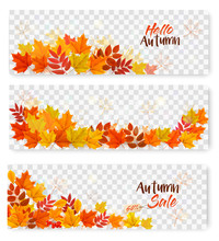 Set Of Three Autumn Sale Banners With Colorful Leaves On Transparent Background. Layered Vector