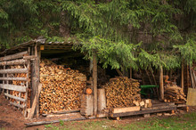 Woodshed In The Pine Forest