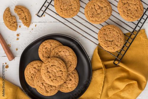 Pumpkin Snickerdoodle Cookies Canvas Print