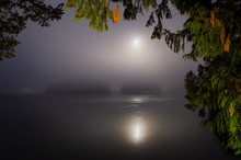 A Misty Moonlit Night