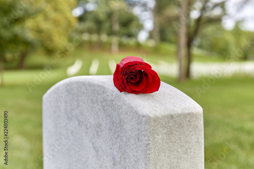 Photo A Blank Headstone with a Rose