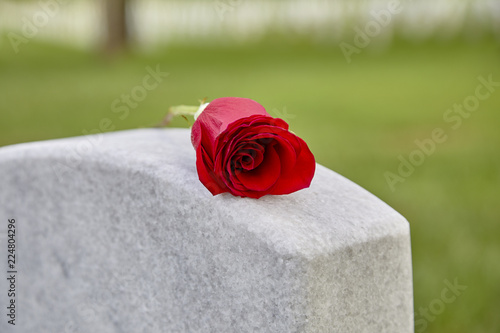 A Blank Headstone with a Rose Canvas Print