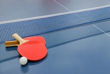 卓球 ラケット 台