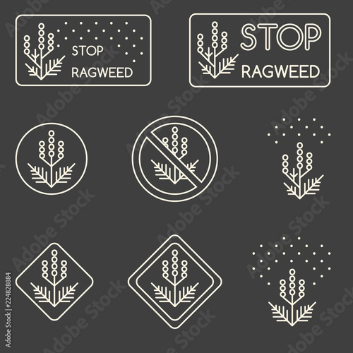 Set of minimalist linear signs about ragweed, dangerous weed, allergy cause Poster Mural XXL