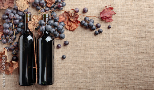Red wine bottles and grapes with dried up vine leaves.