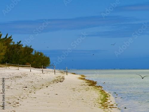 Poster Eiland Paysage, île aux Cocos, Rodrigues, Maurice