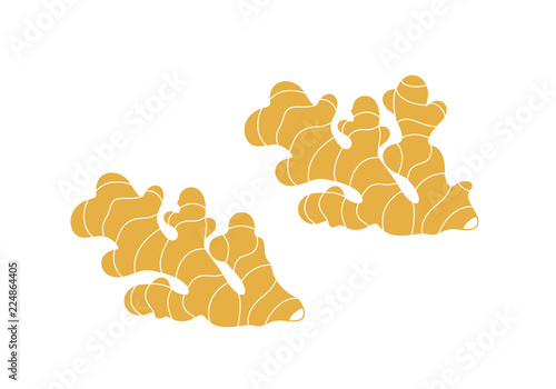 Fototapeta Ginger logo. Isolated ginger on white background