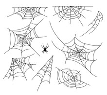 Spiderweb Vector Illustration ...